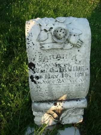 IRVINE, SARAH A. - Washington County, Ohio   SARAH A. IRVINE - Ohio Gravestone Photos