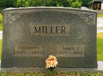 MILLER, JAMES T. - Washington County, Ohio | JAMES T. MILLER - Ohio Gravestone Photos