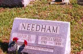 NEEDHAM, JASPER III - Washington County, Ohio | JASPER III NEEDHAM - Ohio Gravestone Photos