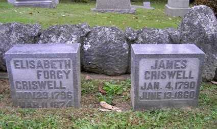 CRISWELL, ELIZABETH - Wayne County, Ohio   ELIZABETH CRISWELL - Ohio Gravestone Photos