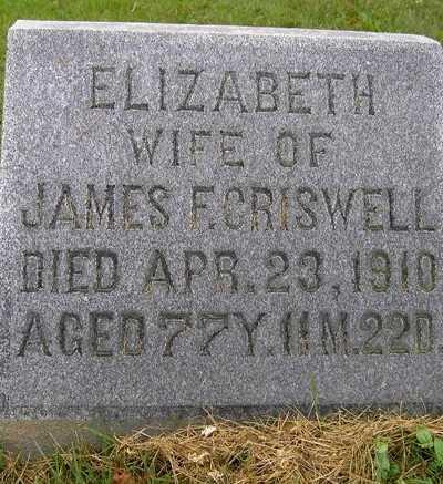 CRISWELL, ELIZABETH - Wayne County, Ohio | ELIZABETH CRISWELL - Ohio Gravestone Photos