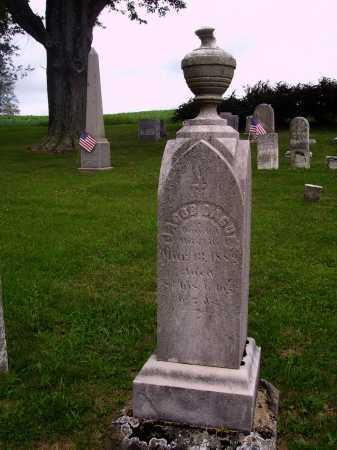 DAGUE, JACOB - OVERALL VIEW - Wayne County, Ohio | JACOB - OVERALL VIEW DAGUE - Ohio Gravestone Photos