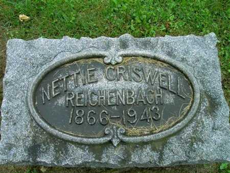 FLUHART REICHENBACH, NELLIE - Wayne County, Ohio | NELLIE FLUHART REICHENBACH - Ohio Gravestone Photos