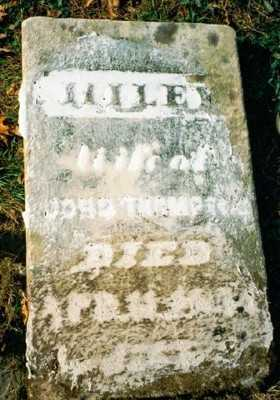 THOMPSON, HILEY - Wayne County, Ohio | HILEY THOMPSON - Ohio Gravestone Photos