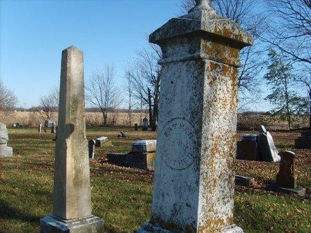 COON, ELIZABETH - Wyandot County, Ohio | ELIZABETH COON - Ohio Gravestone Photos