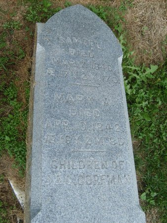 CORFMAN, MARY A - Wyandot County, Ohio | MARY A CORFMAN - Ohio Gravestone Photos