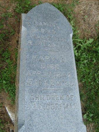 CORFMAN, SAMUEL - Wyandot County, Ohio | SAMUEL CORFMAN - Ohio Gravestone Photos