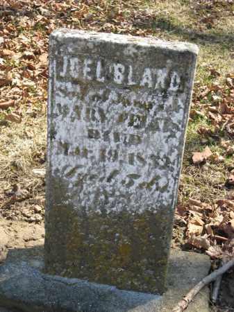 FELTIS, JOEL BLAND - Wyandot County, Ohio   JOEL BLAND FELTIS - Ohio Gravestone Photos