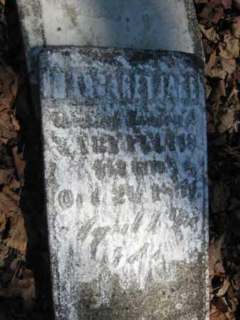 FELTIS, MARGARET JANE - Wyandot County, Ohio | MARGARET JANE FELTIS - Ohio Gravestone Photos