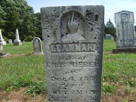 NIEBEL, LEANNAH - Wyandot County, Ohio   LEANNAH NIEBEL - Ohio Gravestone Photos