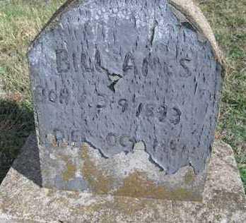 AMES, BILL - Adair County, Oklahoma | BILL AMES - Oklahoma Gravestone Photos