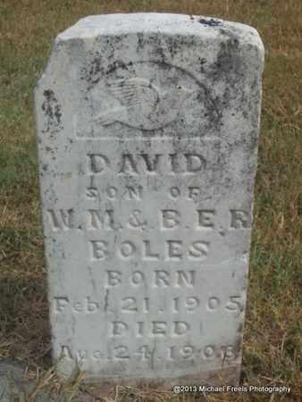 BOLES, DAVID - Adair County, Oklahoma | DAVID BOLES - Oklahoma Gravestone Photos