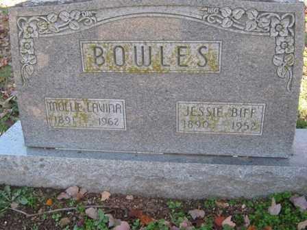 BOWLES, MARY LAVINA - Adair County, Oklahoma | MARY LAVINA BOWLES - Oklahoma Gravestone Photos