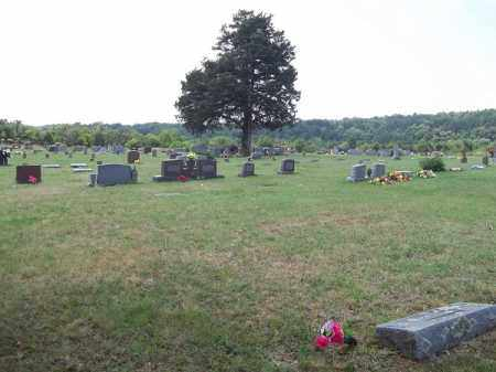 *DOWNING CEMETERY OVERVIEW, . - Adair County, Oklahoma | . *DOWNING CEMETERY OVERVIEW - Oklahoma Gravestone Photos