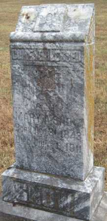 ATKINS (AKINS) SNOW, MARY ANN - Adair County, Oklahoma | MARY ANN ATKINS (AKINS) SNOW - Oklahoma Gravestone Photos