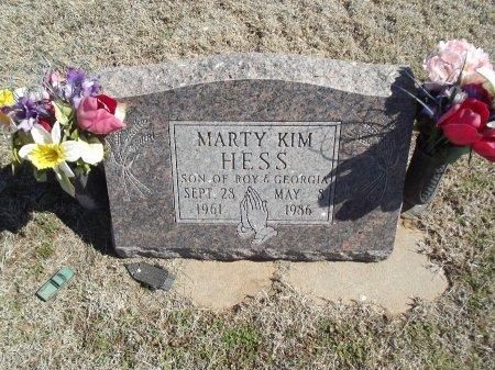 HESS, MARTY KIM - Alfalfa County, Oklahoma | MARTY KIM HESS - Oklahoma Gravestone Photos