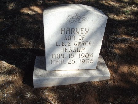 JESSUP, HARVEY - Alfalfa County, Oklahoma | HARVEY JESSUP - Oklahoma Gravestone Photos