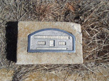THOMPSON, MARTIN - Alfalfa County, Oklahoma | MARTIN THOMPSON - Oklahoma Gravestone Photos