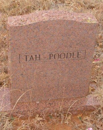 TAH-POODLE, . - Caddo County, Oklahoma | . TAH-POODLE - Oklahoma Gravestone Photos