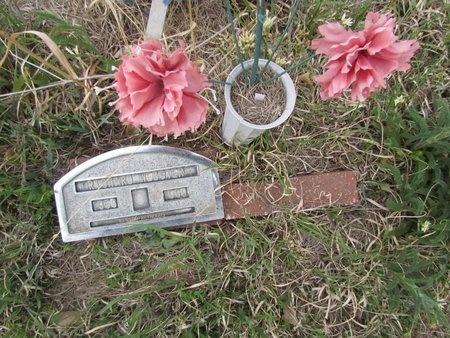 WEBSTER, RICHARD - Canadian County, Oklahoma | RICHARD WEBSTER - Oklahoma Gravestone Photos