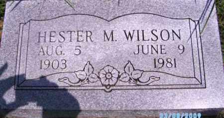 WILSON, HESTER M - Cherokee County, Oklahoma | HESTER M WILSON - Oklahoma Gravestone Photos
