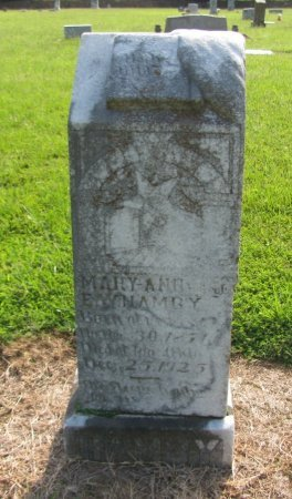 HAMBY, MARY ANN - Choctaw County, Oklahoma | MARY ANN HAMBY - Oklahoma Gravestone Photos