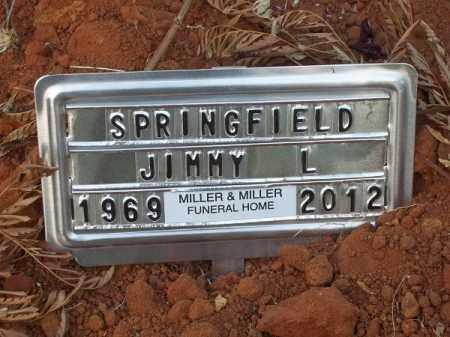 SPRINGFIELD, JIMMY L - Choctaw County, Oklahoma | JIMMY L SPRINGFIELD - Oklahoma Gravestone Photos
