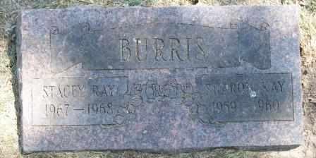 BURRIS, SHARON KAY - Craig County, Oklahoma | SHARON KAY BURRIS - Oklahoma Gravestone Photos