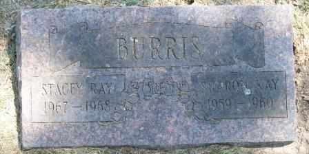 BURRIS, STACEY RAY - Craig County, Oklahoma | STACEY RAY BURRIS - Oklahoma Gravestone Photos