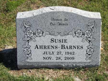 BARNES, SUSIE - Delaware County, Oklahoma | SUSIE BARNES - Oklahoma Gravestone Photos