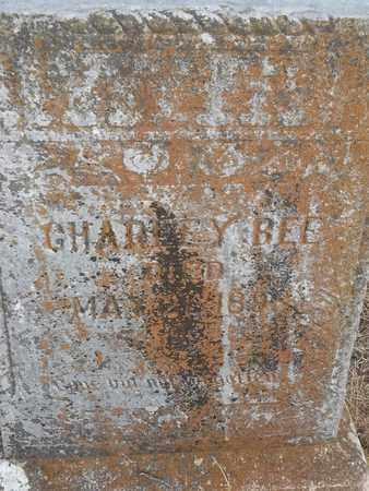 BEE, CHARLEY - Delaware County, Oklahoma   CHARLEY BEE - Oklahoma Gravestone Photos