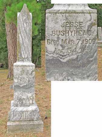 BUSHYHEAD, JESSE - Delaware County, Oklahoma | JESSE BUSHYHEAD - Oklahoma Gravestone Photos