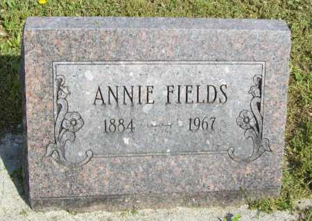 FIELDS, ANNIE - Delaware County, Oklahoma | ANNIE FIELDS - Oklahoma Gravestone Photos