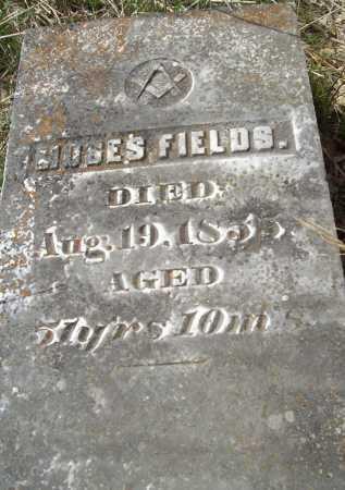 FIELDS, MOSES - Delaware County, Oklahoma | MOSES FIELDS - Oklahoma Gravestone Photos