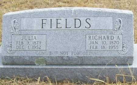FIELDS, JULIA - Delaware County, Oklahoma | JULIA FIELDS - Oklahoma Gravestone Photos