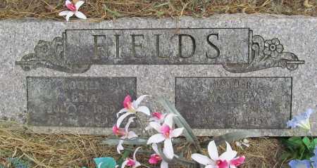 FIELDS, WESLEY - Delaware County, Oklahoma   WESLEY FIELDS - Oklahoma Gravestone Photos
