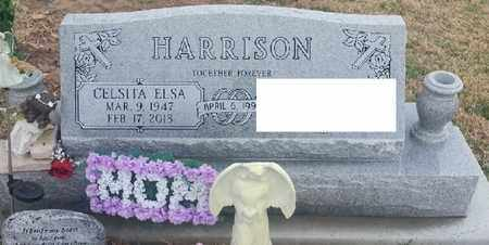 HARRISON, CELSITA ELSA - Delaware County, Oklahoma   CELSITA ELSA HARRISON - Oklahoma Gravestone Photos