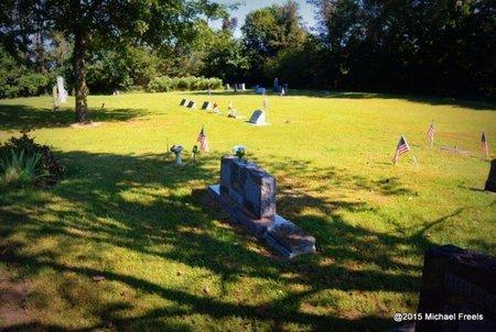 *HILDERBRAND CEMETERY, . - Delaware County, Oklahoma   . *HILDERBRAND CEMETERY - Oklahoma Gravestone Photos