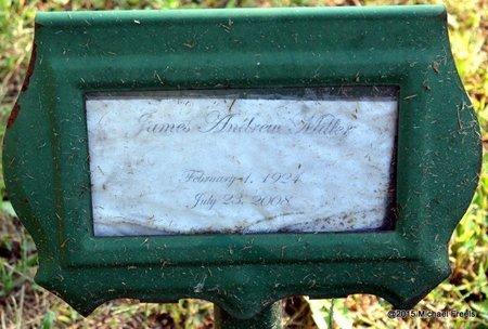 MILLER, JAMES ANDREW - Delaware County, Oklahoma | JAMES ANDREW MILLER - Oklahoma Gravestone Photos