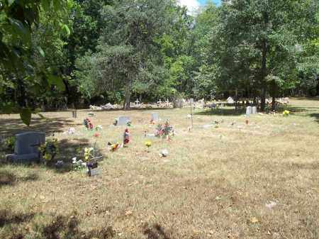 *OFIELD CEMETERY OVERVIEW, . - Delaware County, Oklahoma | . *OFIELD CEMETERY OVERVIEW - Oklahoma Gravestone Photos