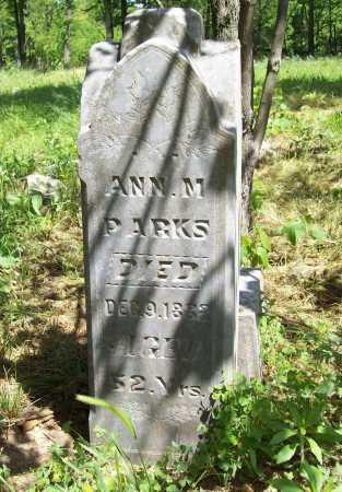 PARKS, ANN M. - Delaware County, Oklahoma   ANN M. PARKS - Oklahoma Gravestone Photos