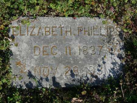 PHILLIPS, ELIZABETH - Delaware County, Oklahoma   ELIZABETH PHILLIPS - Oklahoma Gravestone Photos
