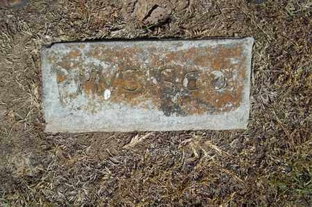 SISCO, P M - Delaware County, Oklahoma | P M SISCO - Oklahoma Gravestone Photos