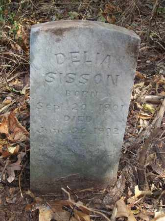 SISSON, DELIA - Delaware County, Oklahoma   DELIA SISSON - Oklahoma Gravestone Photos