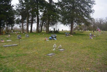 SIXKILLER CEMETERY OVERVIEW 2, * - Delaware County, Oklahoma | * SIXKILLER CEMETERY OVERVIEW 2 - Oklahoma Gravestone Photos