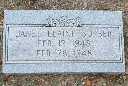 SURBER, JANET ELAINE - Delaware County, Oklahoma | JANET ELAINE SURBER - Oklahoma Gravestone Photos