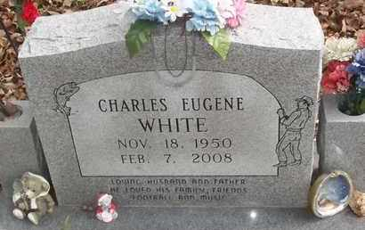 WHITE, CHARLES EUGEN - Delaware County, Oklahoma | CHARLES EUGEN WHITE - Oklahoma Gravestone Photos