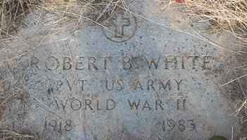 WHITE, ROBERT B - Delaware County, Oklahoma | ROBERT B WHITE - Oklahoma Gravestone Photos