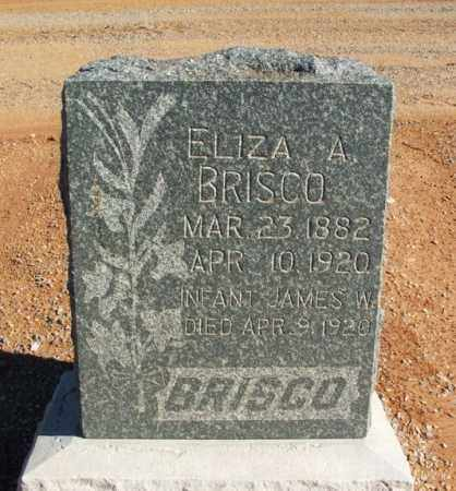 BRISCO, ELIZA A - Harmon County, Oklahoma | ELIZA A BRISCO - Oklahoma Gravestone Photos