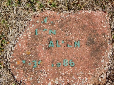 ALLEN, ILLEGIBLE - Kay County, Oklahoma | ILLEGIBLE ALLEN - Oklahoma Gravestone Photos